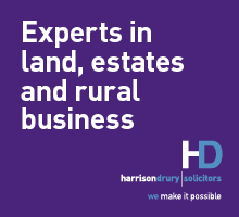 Harrison Drury Land and Rura lEstates