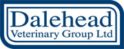 dalehead ltd new logo